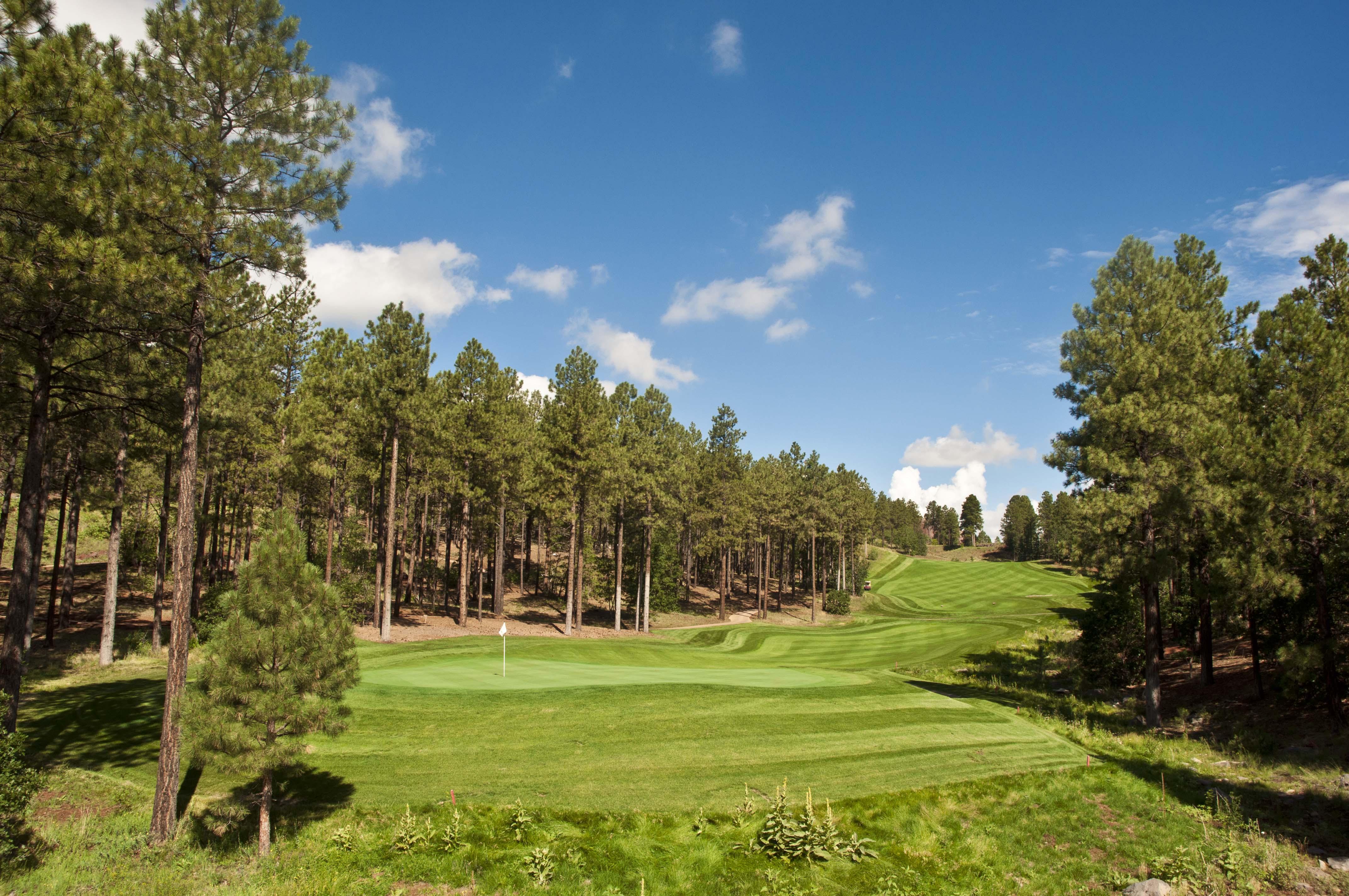 Flagstaff Ranch Golf View 3