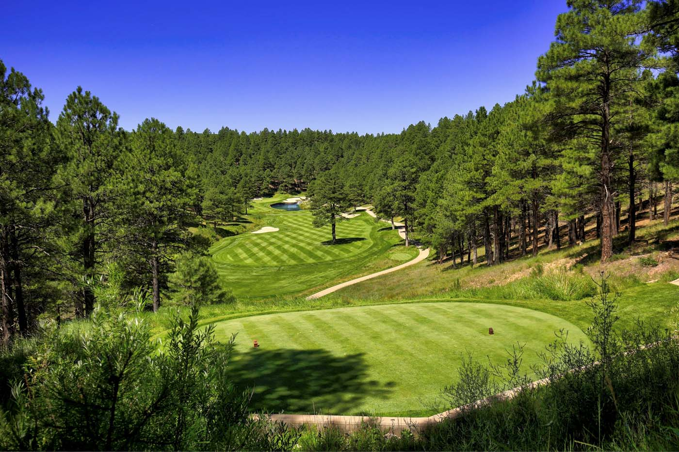 Forest Highlands 8th Hole