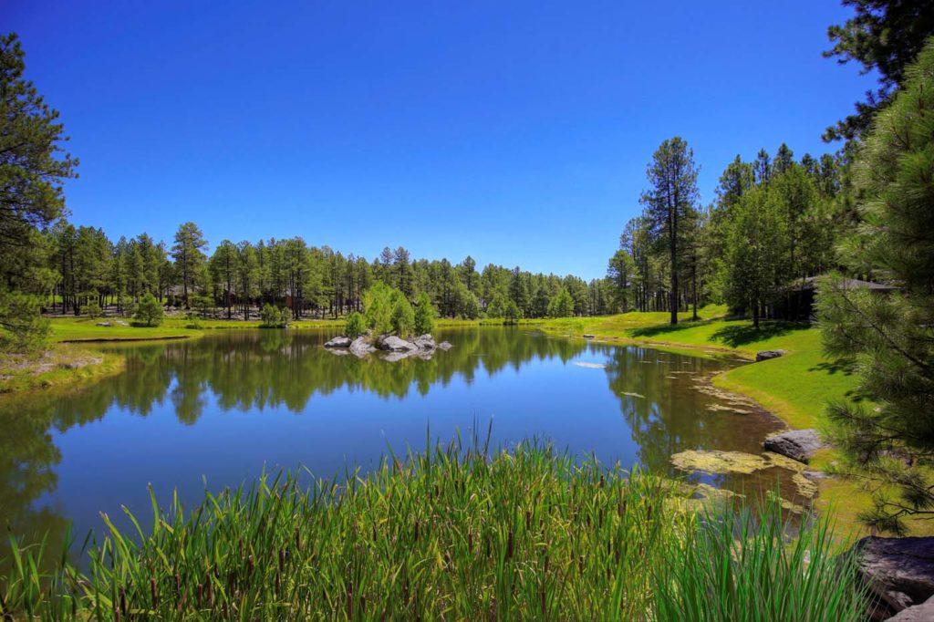 Forest Highlands Pond 2